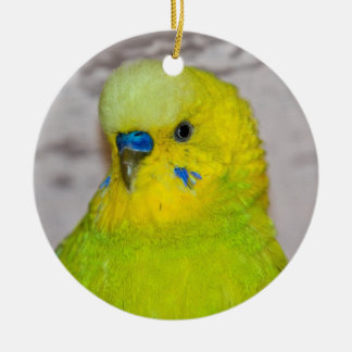 Yellow Budgie Ornament