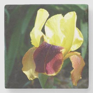 Yellow & Burgundy Iris Marble Coaster Stone Beverage Coaster