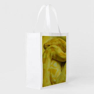 Yellow Burmese Python