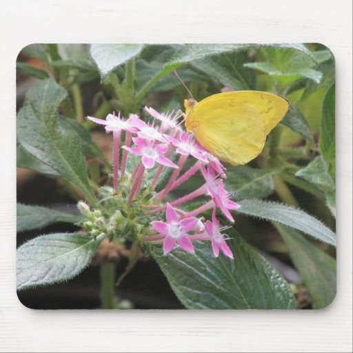 Yellow Butterfly on Pink Flowers Mousepads
