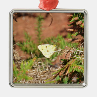 Yellow Butterfly Silver-Colored Square Decoration