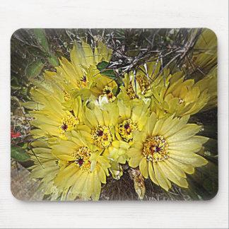 Yellow Cactus Blooms Mousepad