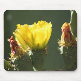 YELLOW CACTUS BLOSSOM MOUSE PAD