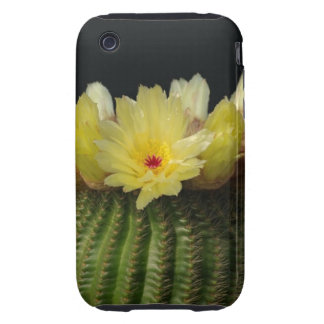 Yellow Cactus Flower iPhone 3 Tough Case