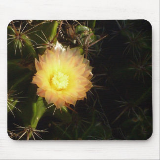 Yellow cactus flower mouse pad
