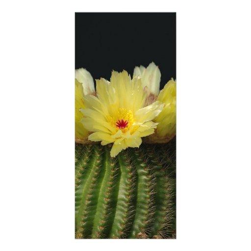 Yellow Cactus Flower Customized Rack Card