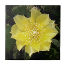 Yellow Cactus Flower Tile