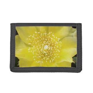 Yellow Cactus Flower Tri-fold Wallet