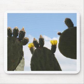 Yellow Cactus Flowers Mousepad