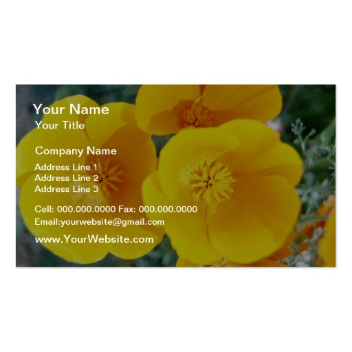 yellow California poppies in full bloom flowers Business Card