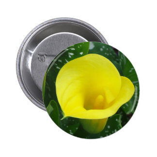 Yellow Calla Button