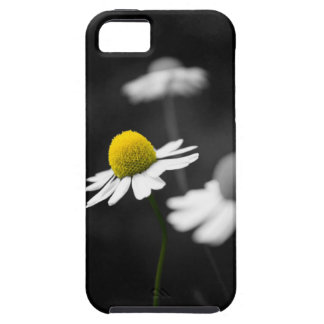 Yellow Camomile Case For The iPhone 5