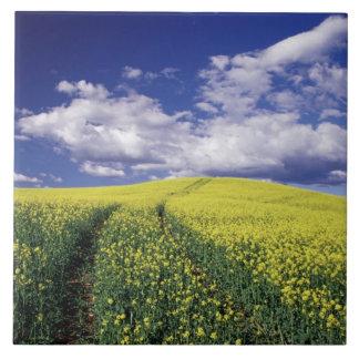 Yellow canola in Whitman County Washington state Large Square Tile