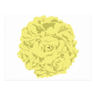 yellow carnation flower postcard