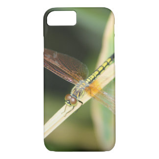 Yellow Chinese Dragonfly Phone Case