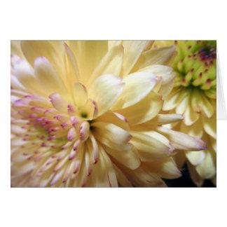 Yellow Chrysanthemum Flower Mums Flowers Photo Card