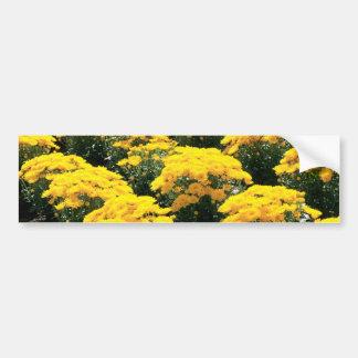 Yellow Chrysanthemum Flowers Bumper Sticker