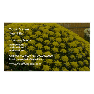 yellow Chrysanthemums in Japanese garden, Japan fl Pack Of Standard Business Cards