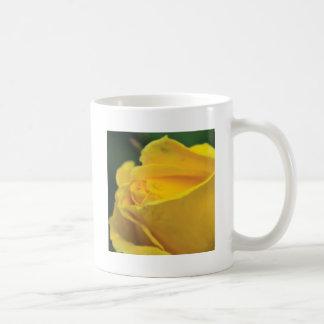 Yellow closed rose coffee mugs