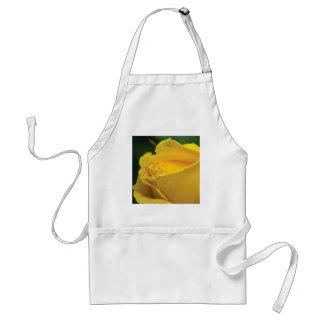 Yellow closed rose standard apron