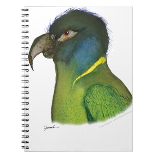 yellow collared macaw, tony fernandes notebook