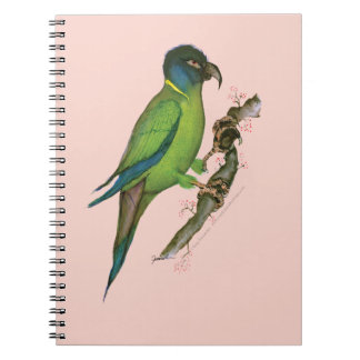 yellow collared macaw, tony fernandes.tif spiral note book