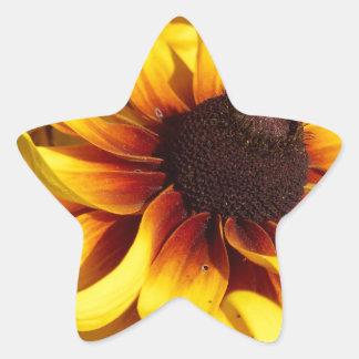 Yellow Coneflower Star Sticker