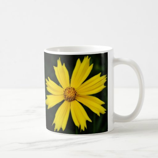 Yellow Cosmos Flower Close-up Basic White Mug