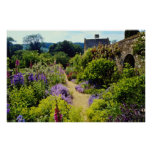 Yellow Cotswold garden flowers Posters