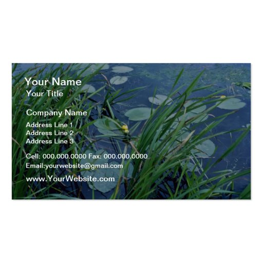 yellow Cow-Lily (Nuphar Variegatum) flowers Business Card Template