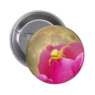 Yellow Crab Spider on Tulip Moon Background 6 Cm Round Badge