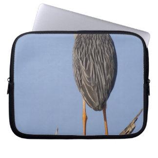 Yellow-crowned Night-Heron, Nyctanassa violacea, Laptop Sleeve