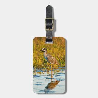 Yellow-Crowned Night-Heron (Nyctanassa Violacea) Luggage Tag