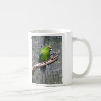 Yellow-crowned Parakeet Coffee Mug