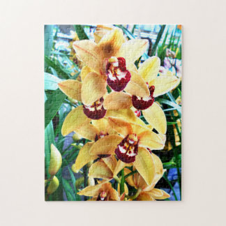 Yellow Cymbidium Orchids Jigsaw Puzzle
