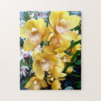 Yellow Cymbidium Orchids Puzzles