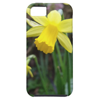 Yellow Daffodil In Soft Focus Tough iPhone 5 Case
