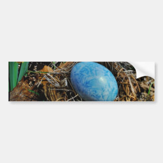 Yellow Daffodils and blue egg in nest Car Bumper Sticker