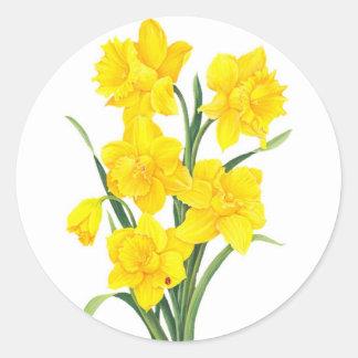 Yellow Daffodils Classic Round Sticker