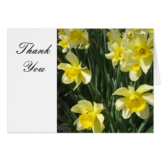 Yellow Daffodils Flowers Thank You Card