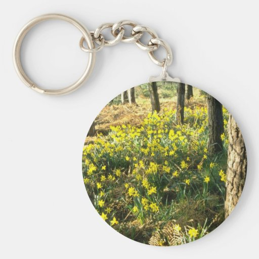 yellow Daffodils near Pine Forest, Notts, England Key Chain