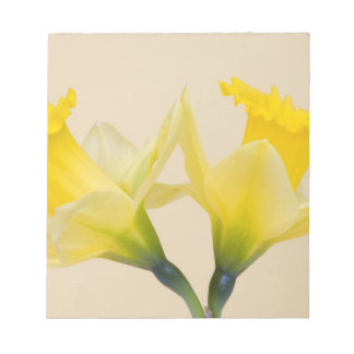 Yellow daffodils notepad