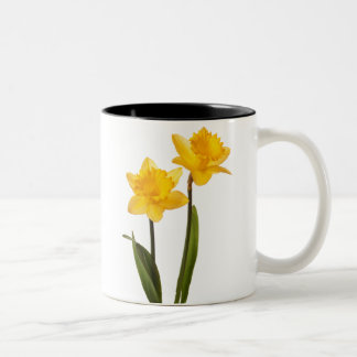 Yellow Daffodils on White - Daffodil Flower Blank Two-Tone Coffee Mug
