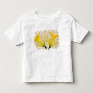 Yellow daffodils t shirt