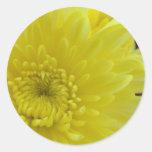 Yellow Dahlia Classic Round Sticker