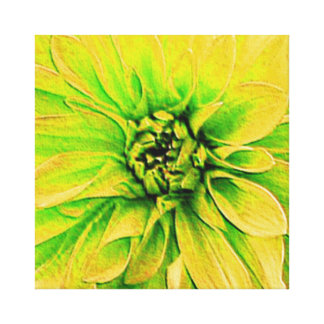 Yellow Dahlia - Closeup Gallery Wrap Canvas