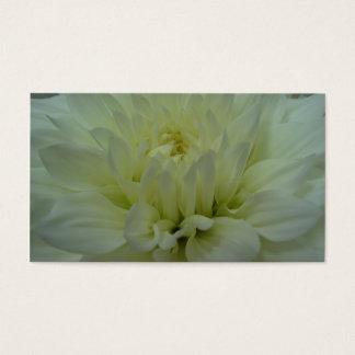 Yellow Dahlia Flower