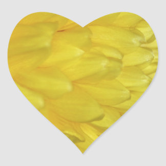 Yellow Dahlia petals Stickers