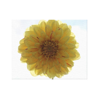 yellow dahlia Wrapped Canvas