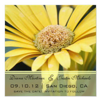 """Yellow Daisies Flowers Save the Date 5.25"""" Square Invitation Card"""